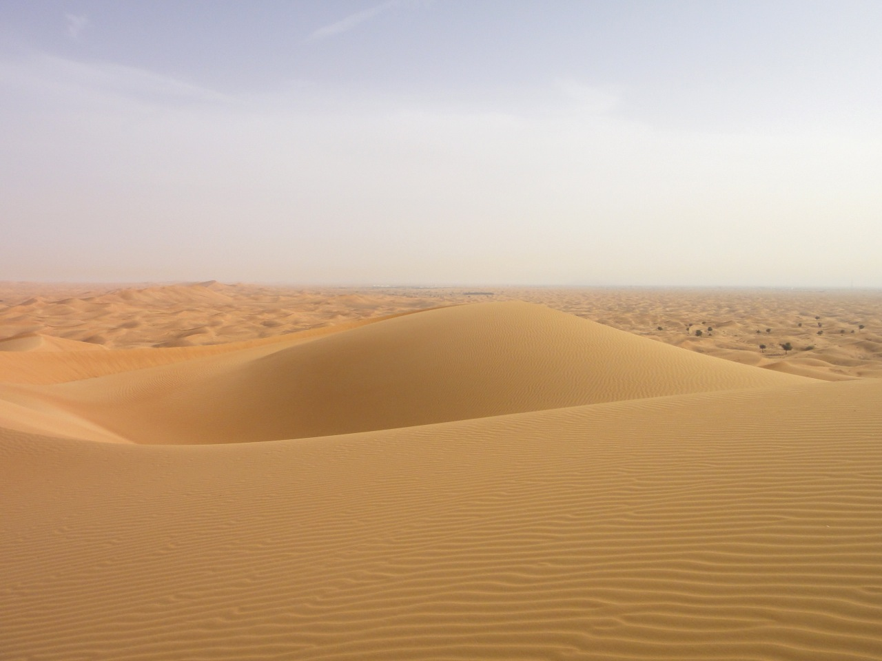 Al Maha Naturschutzgebiet