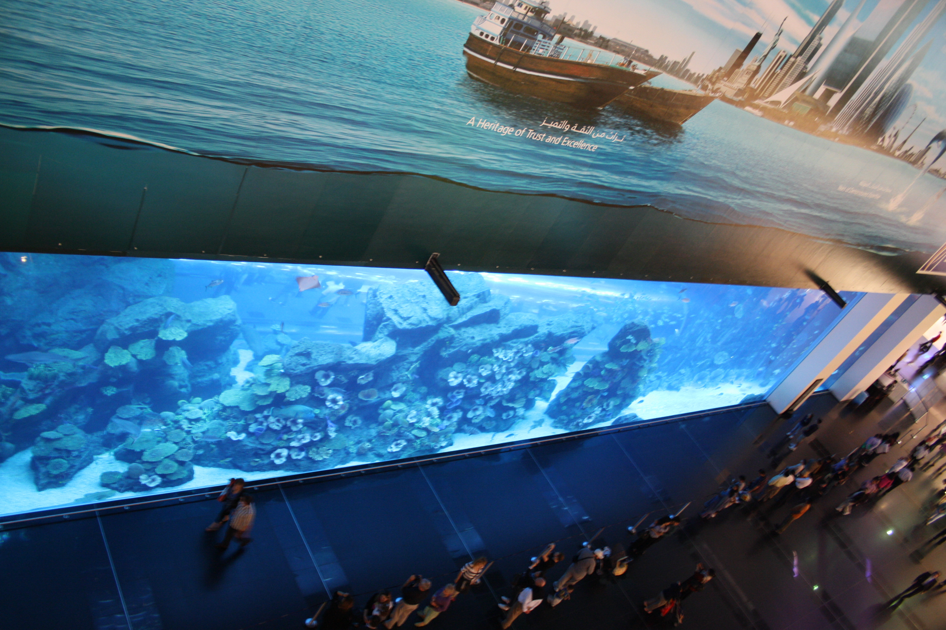 Dubai Mall Indoor Aquarium